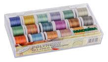 Набор ниток для вышивки Madeira Polyneon Multicolor 8046